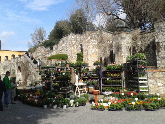 Giardino Scotto, Pisa in fiore